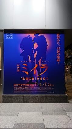 ミイラ展1.JPG