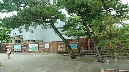 京博1.JPG