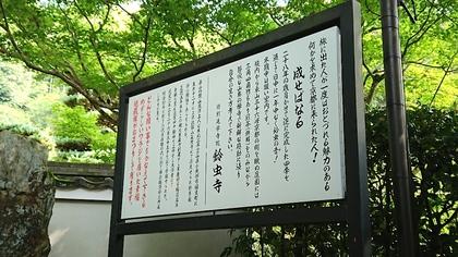 京都2日目12.jpg