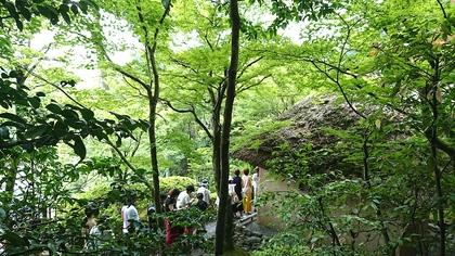 京都2日目14.jpg