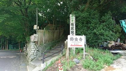 京都2日目6.jpg