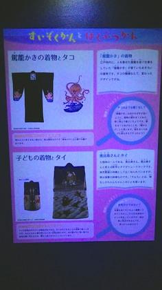 京都水族館3.jpg