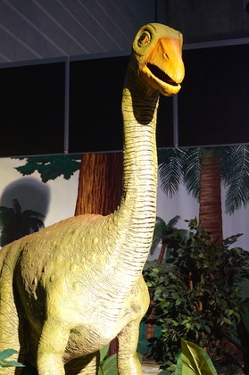 恐竜10.jpg