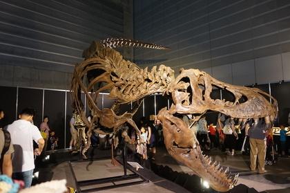 恐竜4.jpg