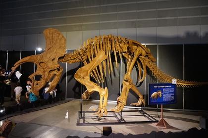 恐竜5.jpg