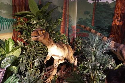 恐竜6.jpg