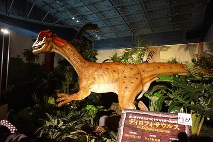 恐竜8.jpg