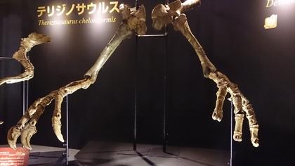 恐竜博2013.jpg
