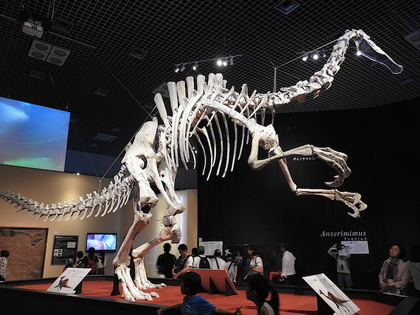 恐竜博8.jpg