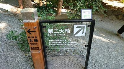 来宮神社4.JPG