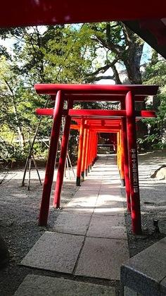 来宮神社7.JPG