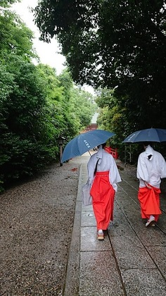 氷川神社2.JPG