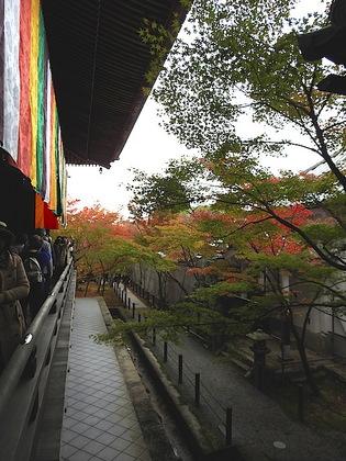 永観堂6.jpg