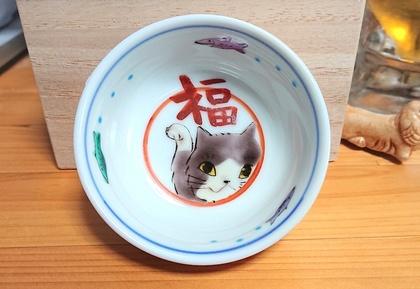 猫4.jpg