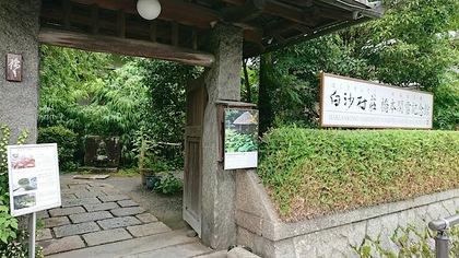 関雪1.JPG